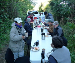breakfast at the banding site (Stylurus) Tags: bird station de mexico reserve jalisco biosphere sierra research banding lasjoyas manantln