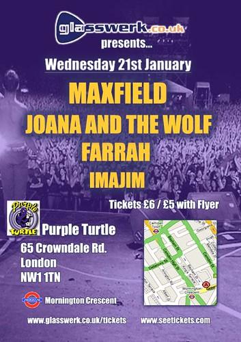 Purple Turtle Flyer