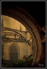 Arcos de la Catedral (Doenjo) Tags: espaa andaluca doenjo texturas catedral retofs1 retofs2 lmdd instagram