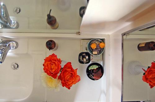 garden roses, counter