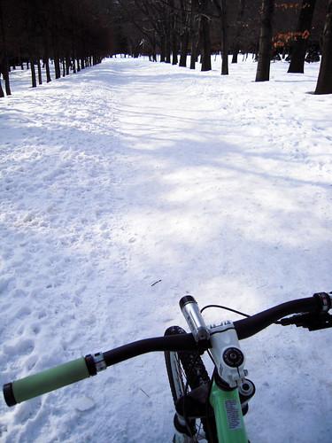 mtb at maruyama park