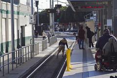 Kid on the tracks helping old lady retrieve fallen item (fredcamino) Tags: blueline metro