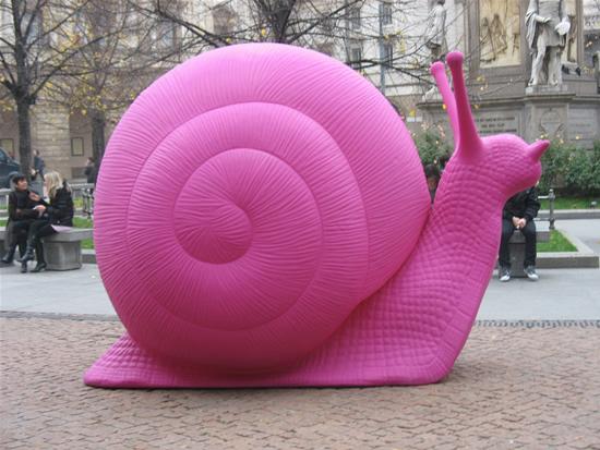 03_pink-snails-3