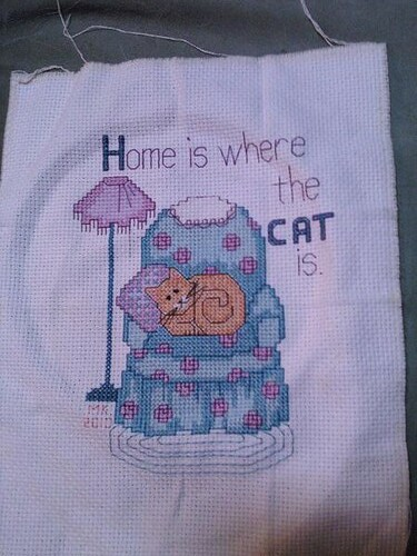 Home is Where the Cat is - Finished on 17 March 2010