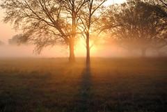 Sunrise re-visited
