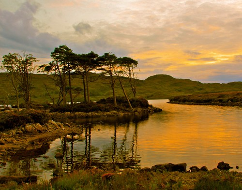 Evening Mood In Assynt