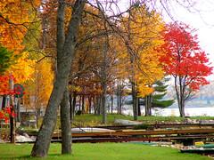 DSC01725 (Brandy Hamilton) Tags: fall saultstemarie 106shoot