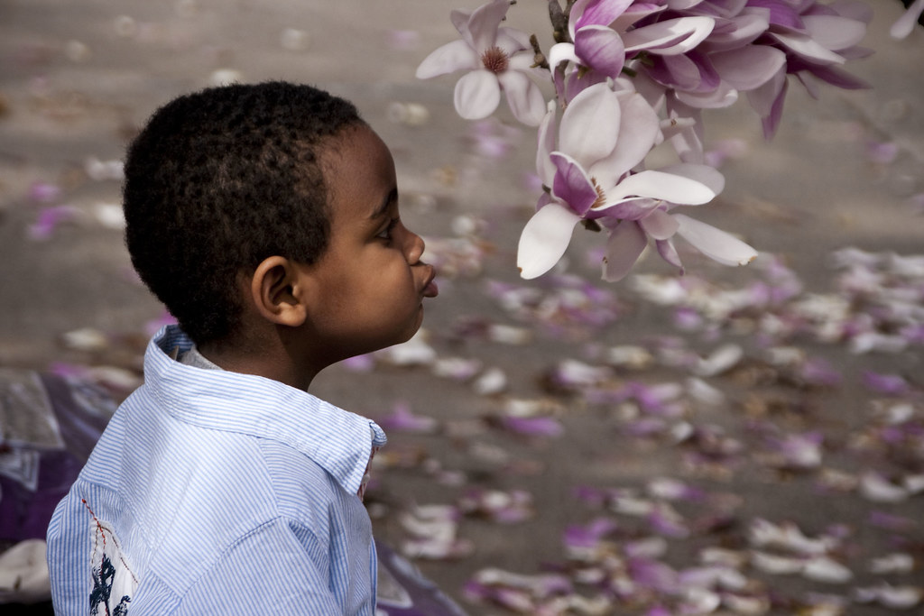 kiss the flower