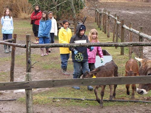 farm playground 6