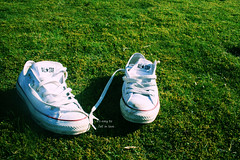 Converse.. (yrrekssor) Tags: sun white green shoe top text low converse cons laces