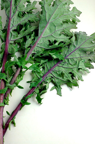 red russian kale leaves