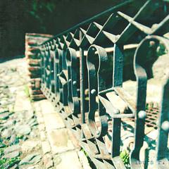 fence friday  (LauraDeu) Tags: vintage fence reja granada fencefriday