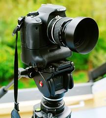 Canon 550D Nikon 50mm f1.2 MF lens