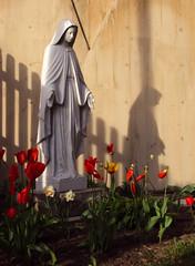 vénération catholique à Marie