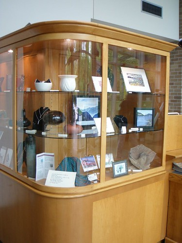 library display case May 2010