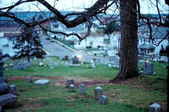 (TORI STEFFEN) Tags: tree film night 35mm f14 cemetary headstones fujifilm expired tori steffen 58mm minoltasrt101 114 slightly rokkor 200speed thisismyfavoritegraveyardaroundhere