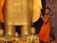 Buddhist Novice in Luang Prabang 2