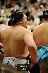 日馬富士 画像48