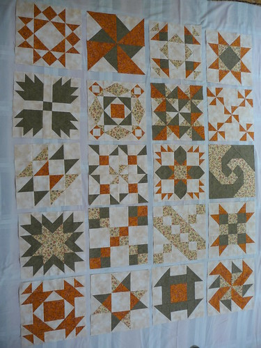First draft of sampler quilt layout