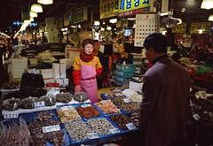 (NateVenture) Tags: travel food fish 120 mediumformat fuji market rangefinder korea meat adventure seoul seafood 6x9 mf 690 exploration fishmarket fujinon rf 220   noryangjin gsw690 6556 dynamickorea gsw690iii noryangjinfishmarket 65mmf56 korea2010