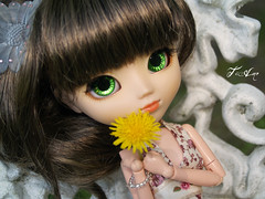 Kirsten- Pullip Nina (Ti Amo) Tags: new flowers flower eye yellow bench outside pretty pullip nina kirsten kirsty kirst sbh dandellion fleshtone pullipdoll neweyes obits rewigged pullipnina obitsued cutwig