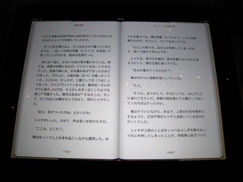 20100518_Metabars3