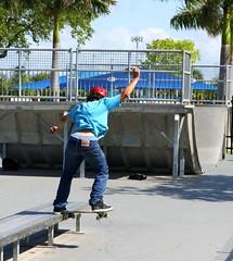 Nose Slide shv out (sk8miami) Tags: skateboarding kick air ollie 180 skatepark flip skitch skateboard manual 50 boneless tweaked 5050 alx sk8 heal  kickflip back180 heelflip noseslide nosegrab regal4 tailstall backlip rocktofakie taildrop indygrab pentaxdafisheye1017mm skatemiami miamiskatepark sk8miami 360shuv floridaskateboarding kendallfreepark deckgrab westwindlakes feepark kendallskatepark miamiskateboarding westwindlakesskatepark westwindlakespark skateboarddowntownmiami beamplant