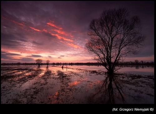 Grzegorz-Niemyjski-Krajobraz-FotoGeA2-foto-1