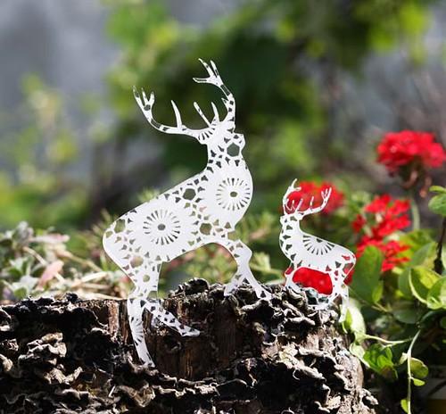 deers doily