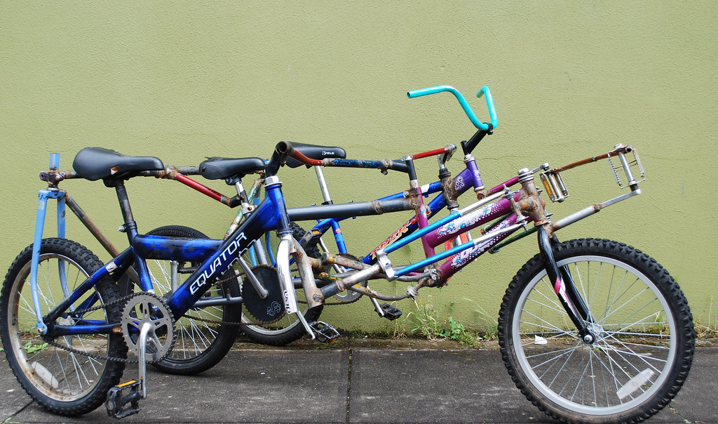 The Mini Bike-bus