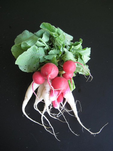 3 kinds of radish