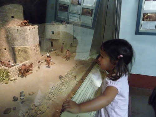 diorama of cliff palace.