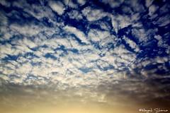 Delhi sky at 6:15pm 8/6/10 (Mayank Sharma renewed :D :D) Tags: blue light sky brown sun white clouds sooc justclouds