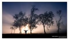 -- Y ------ ([ Kane ]) Tags: morning light sun cold west tree fog canon matt person photography dawn australia human qld queensland 5d rays kane ipswich gledhill kanegledhill 5dmarkii wwwhumanhabitscomau kanegledhillphotography