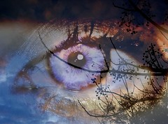 El arco de la vida es solo una ilusin ptica... (conejo721*) Tags: argentina ojo palabras mardelplata poesa poema conejo721 arcozarpanel