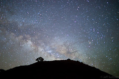 Milky Way Over Big Sur (Jeffrey Sullivan) Tags: california copyright usa tree nature stars landscape photo hill bigsur silhouete 2010 milkyway jeffsullivan Astrometrydotnet:status=solved astro:name=hourglassnebula astro:name=lagoonnebula astro:name=thestargirtabsargassco astro:name=ngc6523 astro:name=m8 astro:name=thestarshaulasco astro:name=thestarkausaustralissgr astro:name=thestarnunkisgr astro:name=thestarsco astro:name=ngc6383 astro:name=ngc6475 astro:name=m7 astro:name=thestarantaressco astro:name=ic4592 astro:name=thestardschubbasco astro:name=ic4628 astro:name=thestarsco astro:name=thestarsabikoph astro:name=thestaroph Astrometrydotnet:version=14400 astro:RA=264007659904 astro:orientation=14859 Astrometrydotnet:id=alpha20101091626728 astro:Dec=153444384787 astro:pixelScale=34839 astro:fieldsize=7742x5158degrees