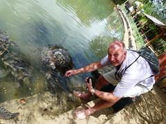P1040771 (raafjes) Tags: bali turtleisland pulauserangan