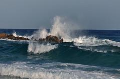Dune di Campana (Cagliari) (paola.bottoni) Tags: sardegna italy mare cagliari