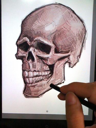 live sketching of skull on iPad Sketchbook Pro