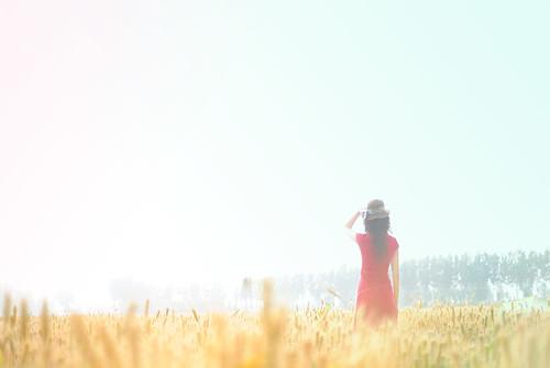 フリー写真素材, 人物, 女性, 人と風景, 草原, 後ろ姿, 帽子・キャップ,