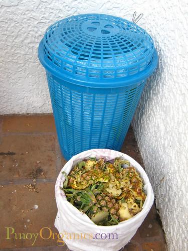 urban composting 2