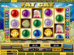Fat Cat slot game online review