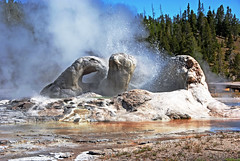 Grotto Geyser (WorldofArun) Tags: nature landscape nikon montana reserve biosphere september worldheritagesite planet vegetation yellowstonenationalpark environment yellowstone wyoming geyser bacteria geothermal thermal 2010 ecosystem fireholeriver 18200mm supervolcano uppergeyserbasin thermalvent thermophilicbacteria d40x greateryellowstoneecosystem geothermalfeatures ecologicalzone worldofarun arunyenumula freeroamingwildlife