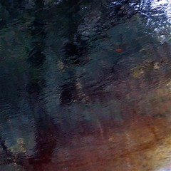 Golden Morning...!!! (Denis Collette...!!!) Tags: morning trees wild canada reflection tree art reflections river golden rivière reflet arbres québec rivers impressions dor arbre reflets photosafari impression impressionist redleaf matin sauvages sauvage impressionists rivières portneuf wildriver impressionistes impressionniste feuillerouge deniscollette pontrouge rivièresauvage rivièressauvages photossafari