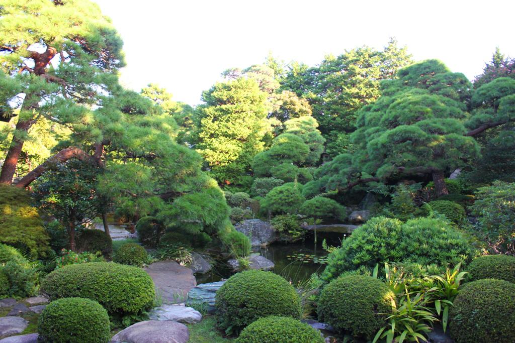 "Walking ""Shibamata"" the Town of Tora-san (21)"