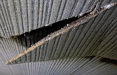 asbestos 3 (Asbestos Removal Central) Tags: asbestos asbestosdisposal asbestossitedemolition asbestostesting asbestosremovals