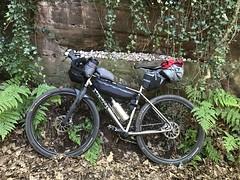 Abbots Bromley - Cannock Chase July 2017 (adventurercyclist) Tags: bikepacking caminotitanium sonder alpkitsonder