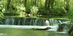 Salto (thoskar) Tags: waterfall water agua river río nature naturaleza burgos sedano landscape nikon d3300 salto spain