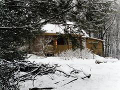 Winter house (raphic :)) Tags: las winter light house snow window nature pine forest evening dom poland polska zima nieg okno wiato przyroda sosna wieczr raphic wierzchoniw