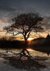 (digitalpsam) Tags: uk sunset clouds spectacular surreal atmosphere fields dreamy serene heavenly imagery saariysqualitypictures freedancephotographers wonderworldgallery sammatta